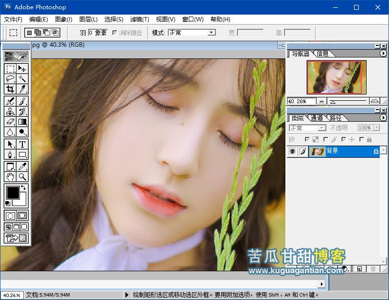 Photoshop 6.0 绿色精简单文件版插图